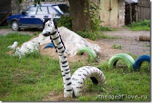 Жирафозебра