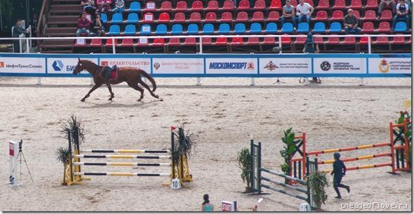 Лошадь отлынивает