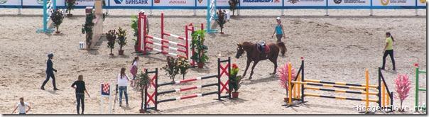 Лошадь продолжает отлынивать