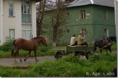 Мужики на лошади с запаской.